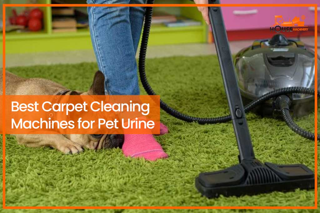 Best Carpet Cleaning Machines for Pet Urine