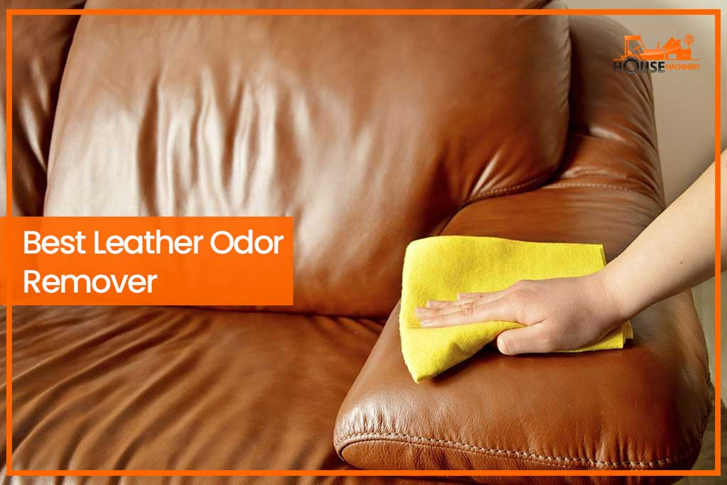 Best Leather Odor Remover