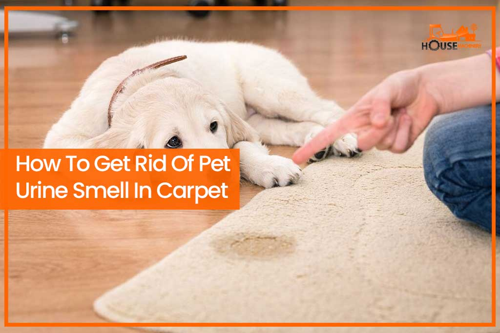 How To Get Rid Of Pet Urine Smell In Carpet